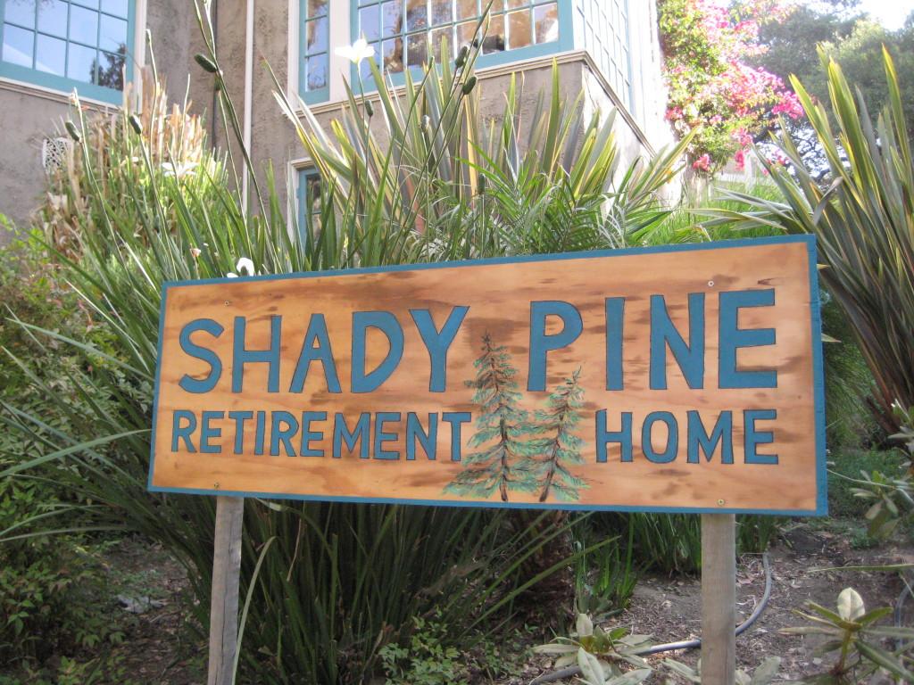 Shady Pines Signage